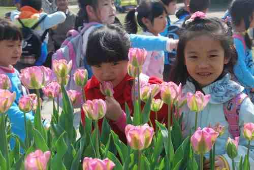 宿州路幼儿园春游活动