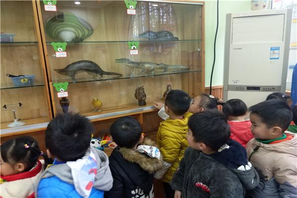 荣幼:走进科学发现室之观看动物标本