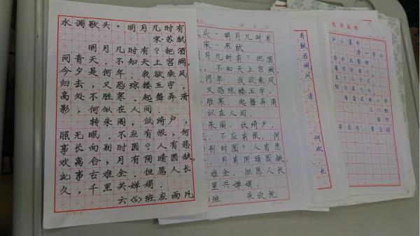 海棠开展规范汉字书写比赛